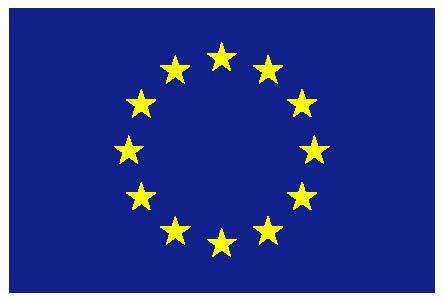 EU flag yellow low